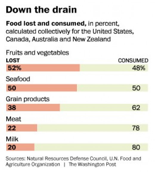 The food loss is shocking and represents globally an agricultural area of USA and Russia together. What food problem do we have? The food problem is just another illusion - one the many.