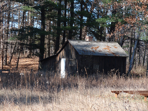 "Aldo Leopold wrote frequently about the happy times spent with his family in the ""Shack"" near Baraboo, WI."