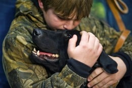 Some dogs thrive on a kid's attention, while others are an accident waiting to happen.