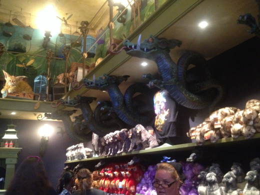 The walls are laden with magical creatures here in the Menagerie.