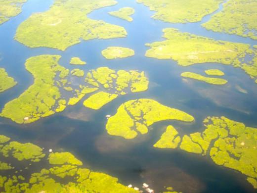 Aerial view of Bucas Grande Island