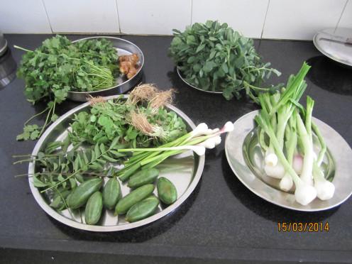 Green and Leafy Vegetables for Healthy Diet. શાકાહારીએ લોહતત્વ મેળવવા માટે લીલા રંગના શાક અને ભાજી ખાવા જોઈએ.