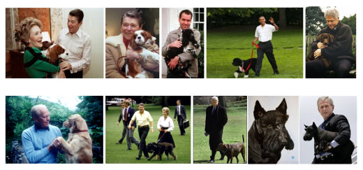 Presidents with their pets.