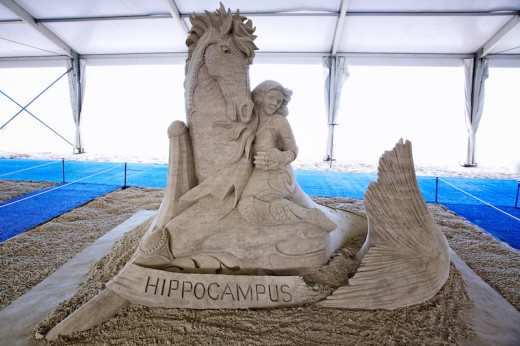 Mythological Seahorse