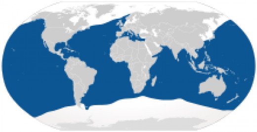 The blue areas represent the places where Blue Sharks can be found.