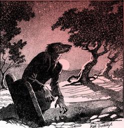 The Werewolf Tale