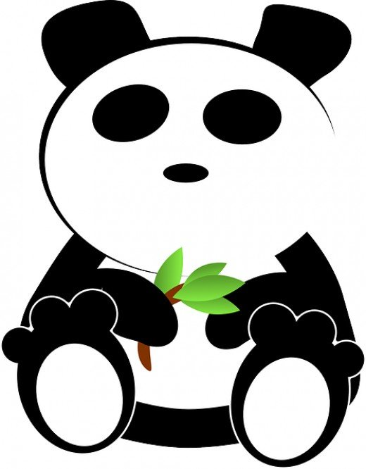 Bamboo is the main food source for pandas in China.