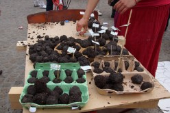 Seed Bomb Tutorial - How to Make Seed Bombs DIY
