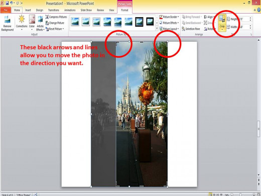 Cropping and resizing photo with PowerPoint