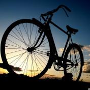 Bikegurl profile image