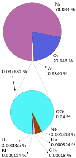 Nitrogen (purple) is by far the most numerous gas in the atmosphere. Oxygen (blue) is next. Then argon (yellow). The aqua circle shows components of the rest of the gases, most of which is carbon dioxide (aqua).