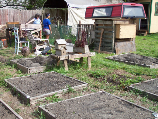 Get rid of your lawn and grow food