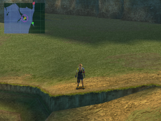 Final Fantasy X does away with overworld maps, instead giving each of the game's areas its own traversible map.