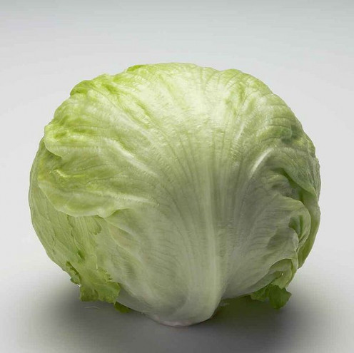 Head of lettuce. This head of lettuce is to be chopped up and use in the taco salad recipe.