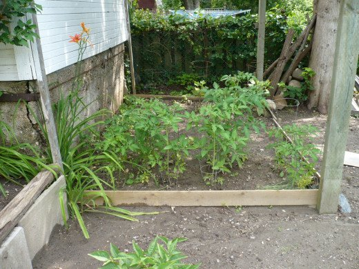 A raised bed Vegetable garden is a great fall project.