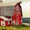 Why Are Barns Red? My Astronomical Answer