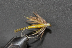 Fly Tying The Yellow Teal Nymph