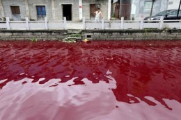 Waters turned to blood?