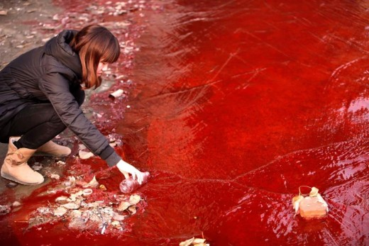 Blood-red China Waters