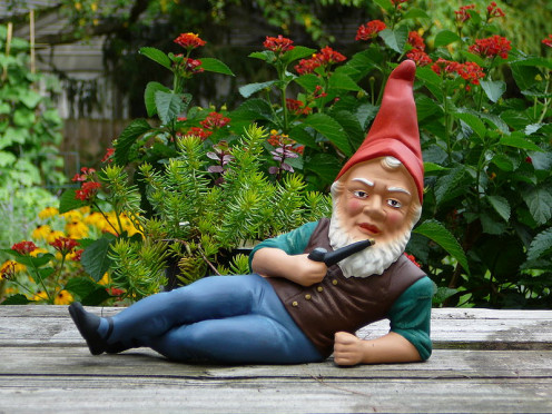A German Garden Gnome.