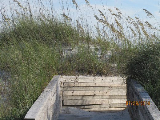 Boardwalk to the Beach  from Shady Pines