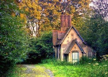 A Cute Cottage In The Woods