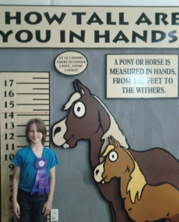 """Measured in """"Hands,"""" she falls between a pony and a horse."""