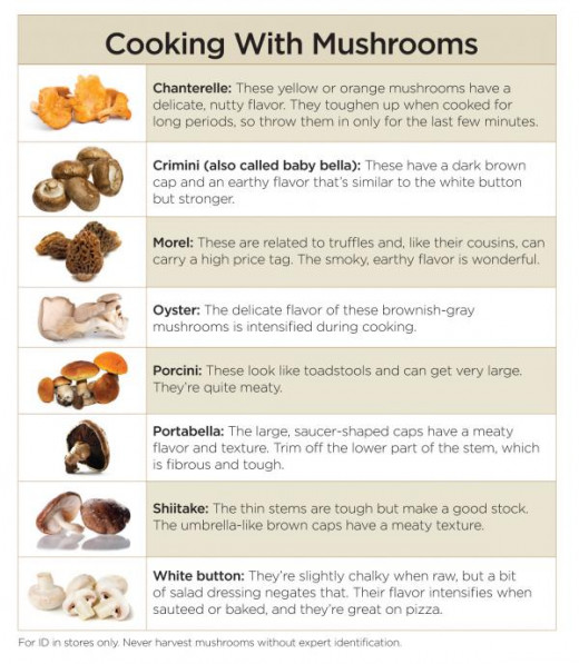 Types of Mushrooms & their Flavors