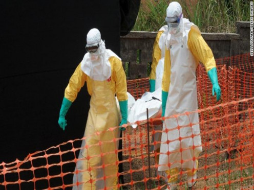 Could we survive a global Ebola pandemic?