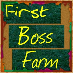 Order and Chaos: What Is FB Farm?