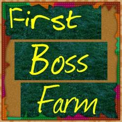 First Boss Farming on