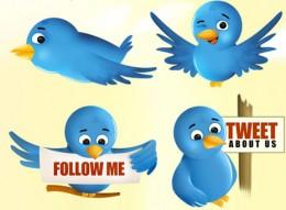 Flocking to Twitter