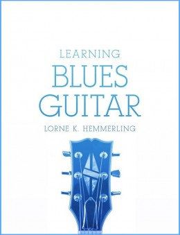 Review by Karen: Starts at the beginning and breaks the blues down in a well articulated way. It exponentially grows from there.