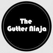 thegutterninja profile image