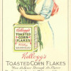 The Health Food that Changed America's Breakfast Habits: The Kellogg Brothers