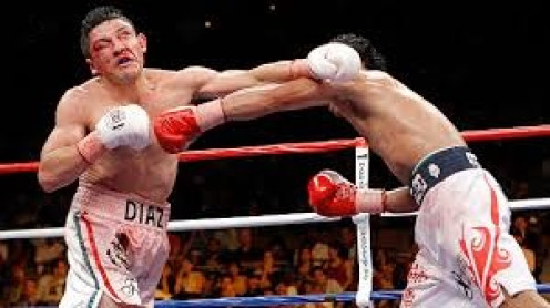 Manny Pacquiao flattened David Diaz in nine rounds to win a portion of the lightweight title.