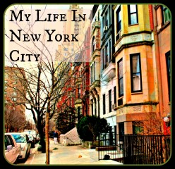 Life in New York City