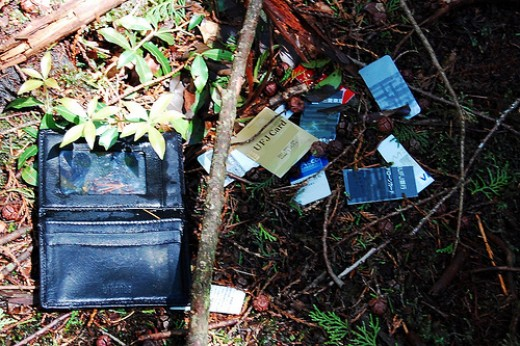 A wallet that has been rummaged through in the forest.