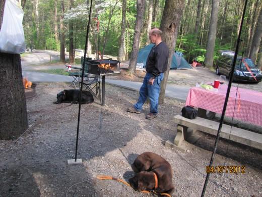 Campsite # 37 - Vogel State Park, GA