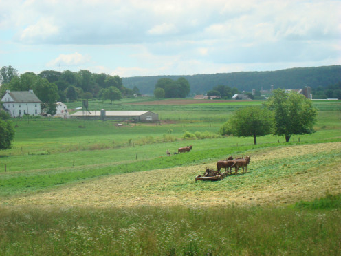 Amish farm land in Lancaster County.
