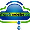 Whosellswebsites profile image