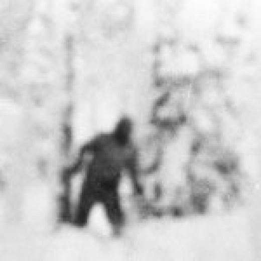 """Yeti"" image retrieved from student's camera"