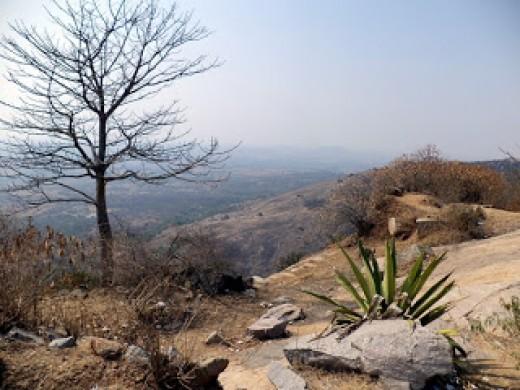 View Of The Plains - Devarayanadurga