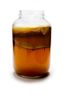 Kombucha tea fermenting.