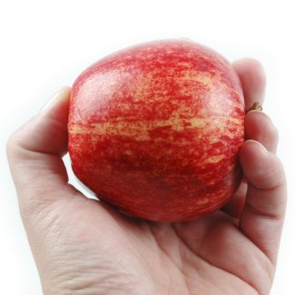 Eat an Apple a Day to Keep Hunger at Bay