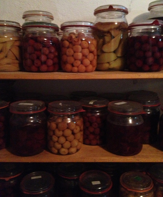 Canning jars of all kinds and sizes.