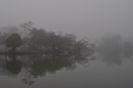 Foggy morning over the lagoon
