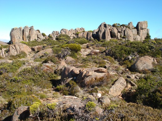 Rocky Outcrops and Interesting Flora