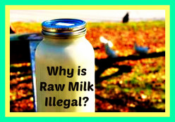Why is Raw Milk Illegal?