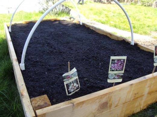 plant your garden.